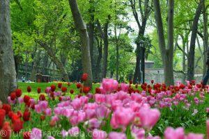 Весна в Стамбуле - Парк Гюльхане